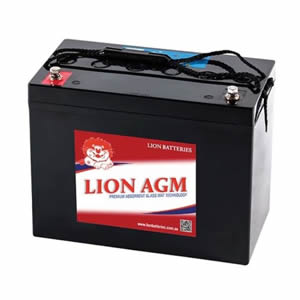 LION AGM Batteries